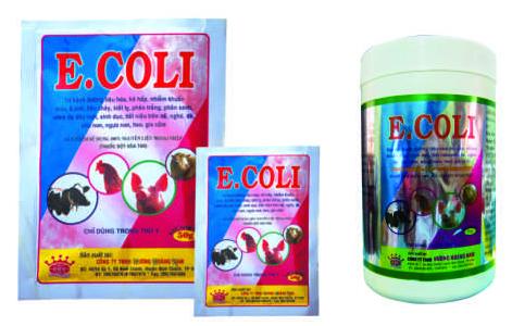 Thuốc thú y E.COLI