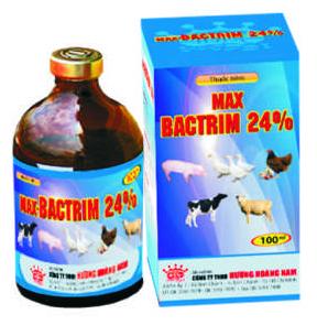 Thuốc thú y Max - Bactrim 24%