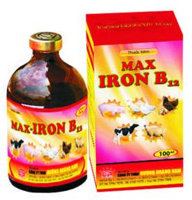 Thuốc thú y Max - Iron B12